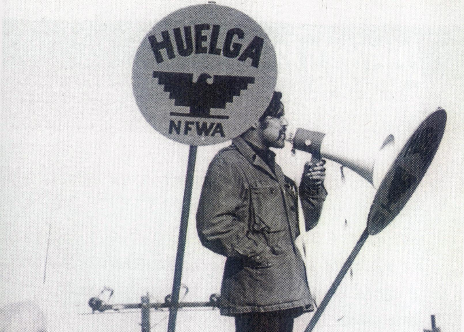 Luis - Picket Captain, 1965